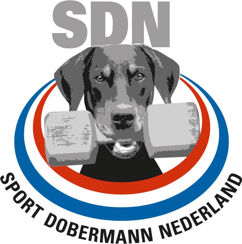 Logo SDN